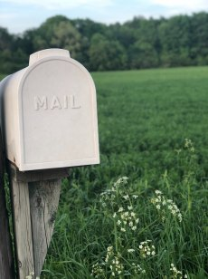 white mailbox on wood post in green field